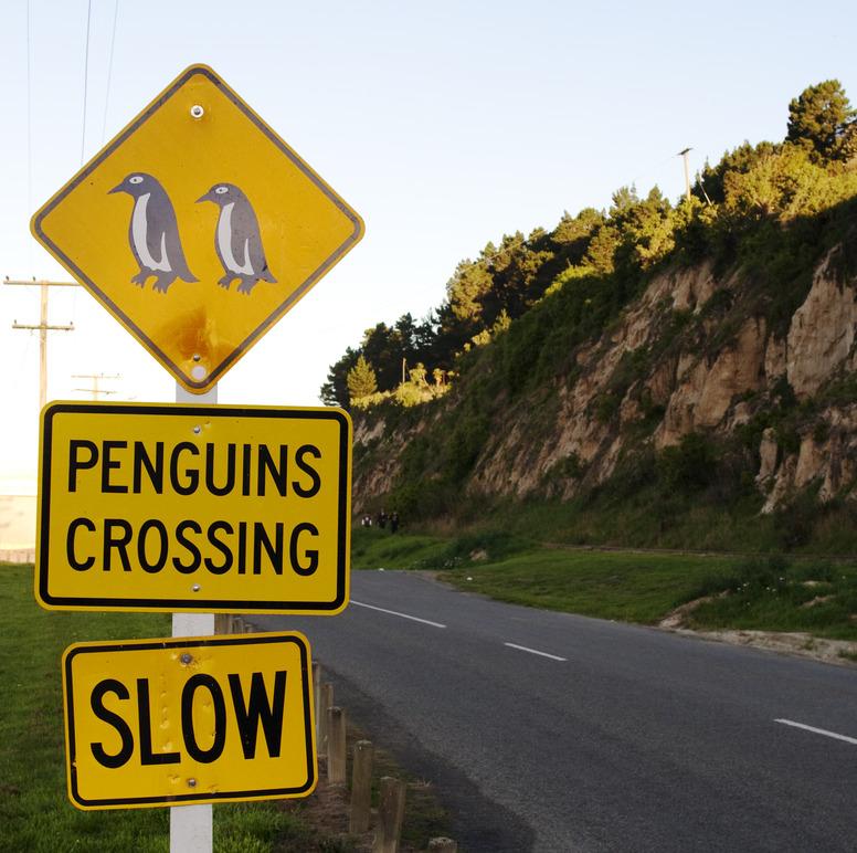 Pinguin 2.0 – Google bewertet Backlinks neu